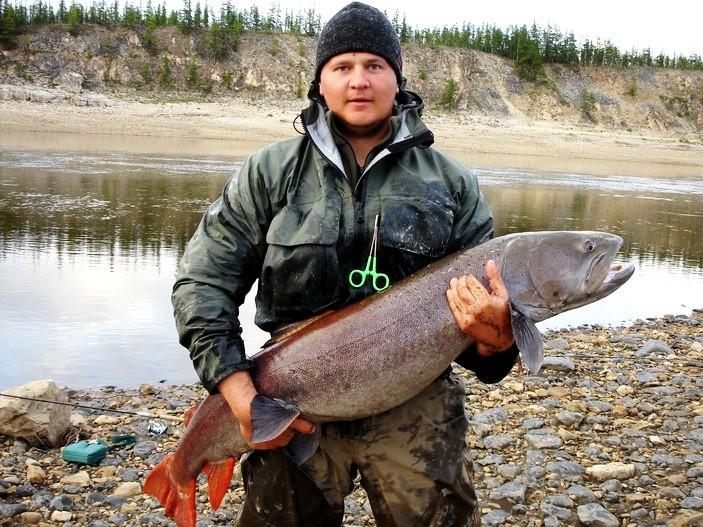 рыбалка в эвенкии на тайменя