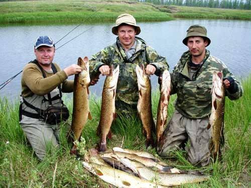 рыбалка на нижней суре
