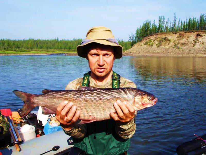 ловля щуки на озере сиг