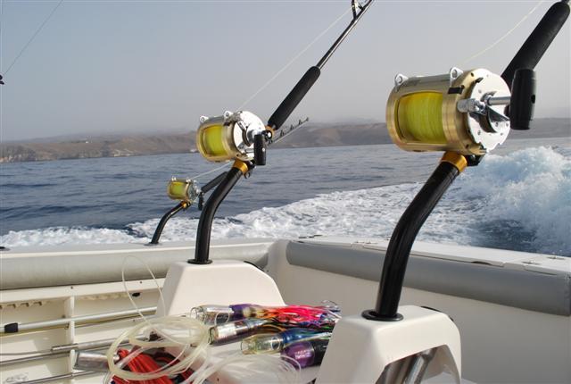 катер с которого ловят тунца