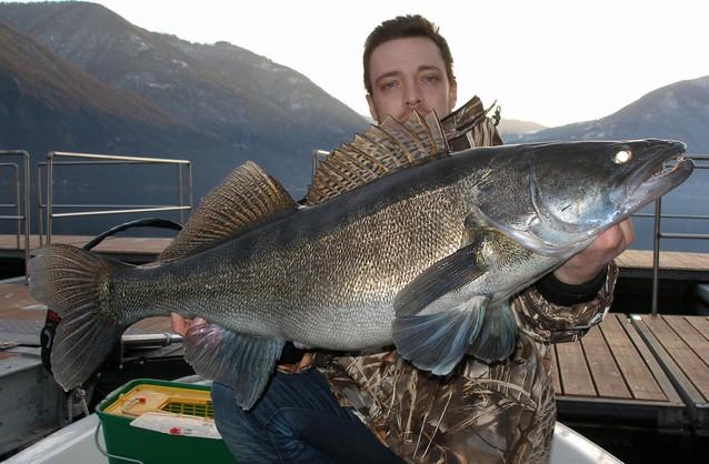 ловить рыбу в барселоне