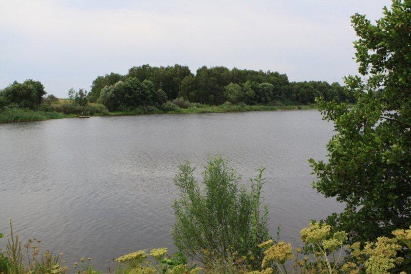 ловля на реке желеме