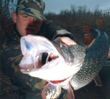 коломна рыбалка ока прогноз