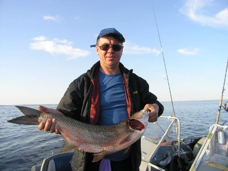 рыбалка на реках рыбинского водохранилища видео