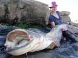 ловля сома на цимлянском водохранилище
